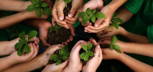 [kids holding plants]